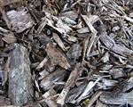 In Mulch